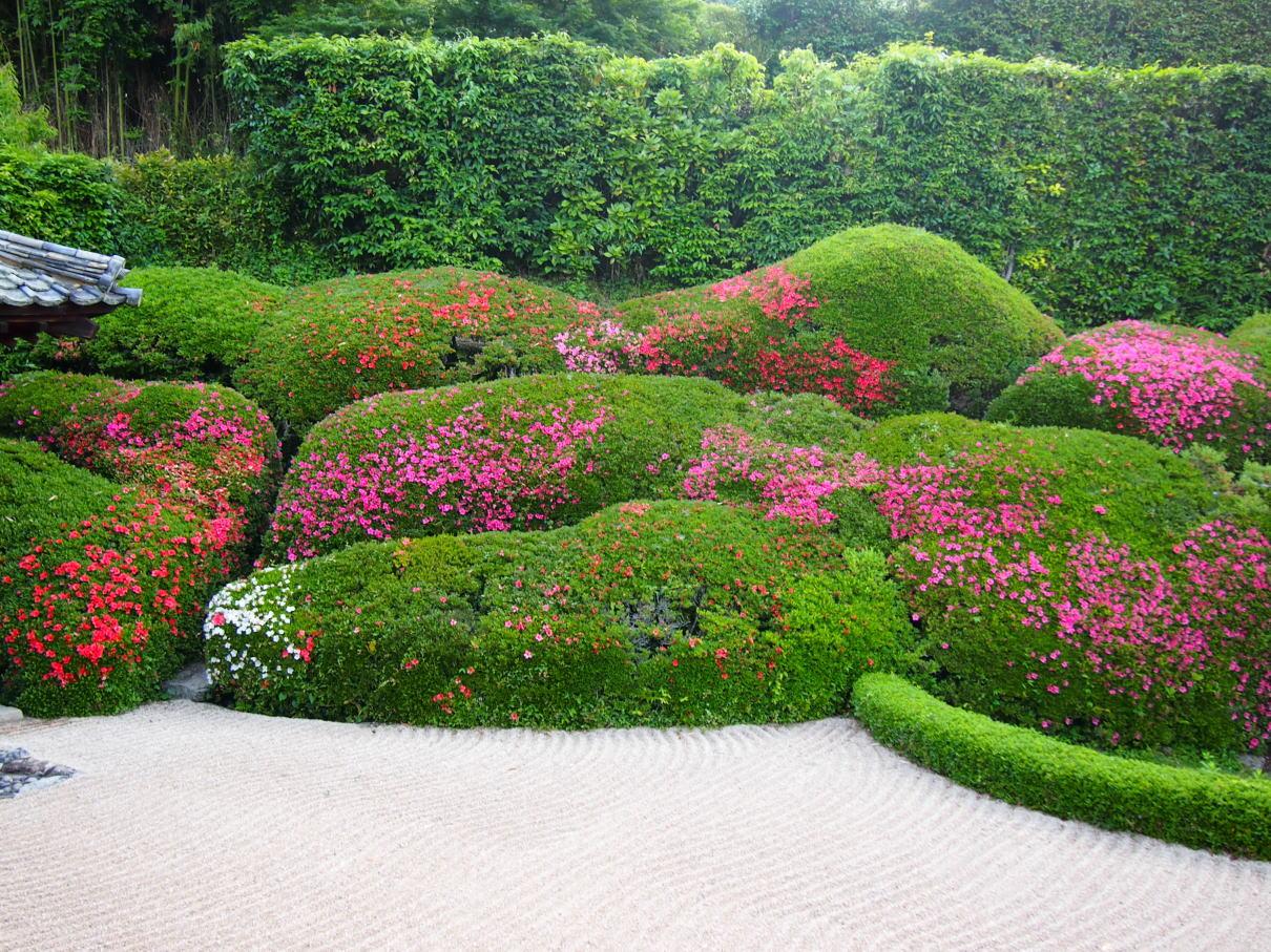 2017年5月29日の庭園