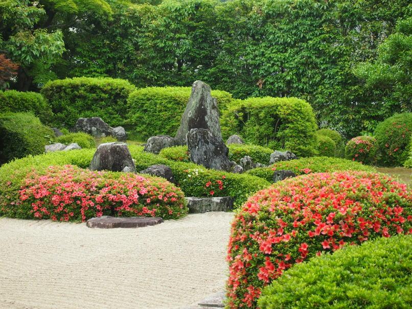 2021年5月26日の庭園
