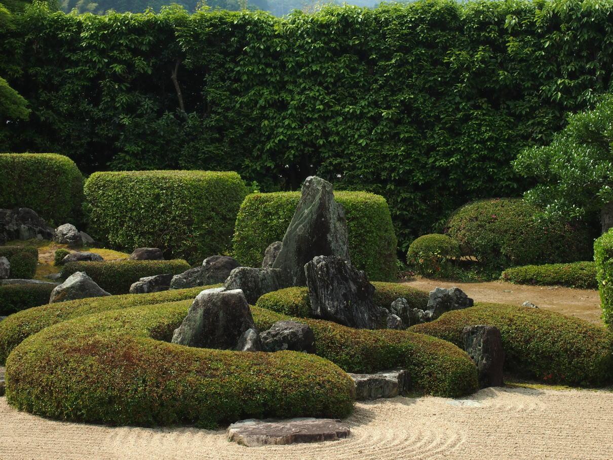 2017年6月20日の庭園