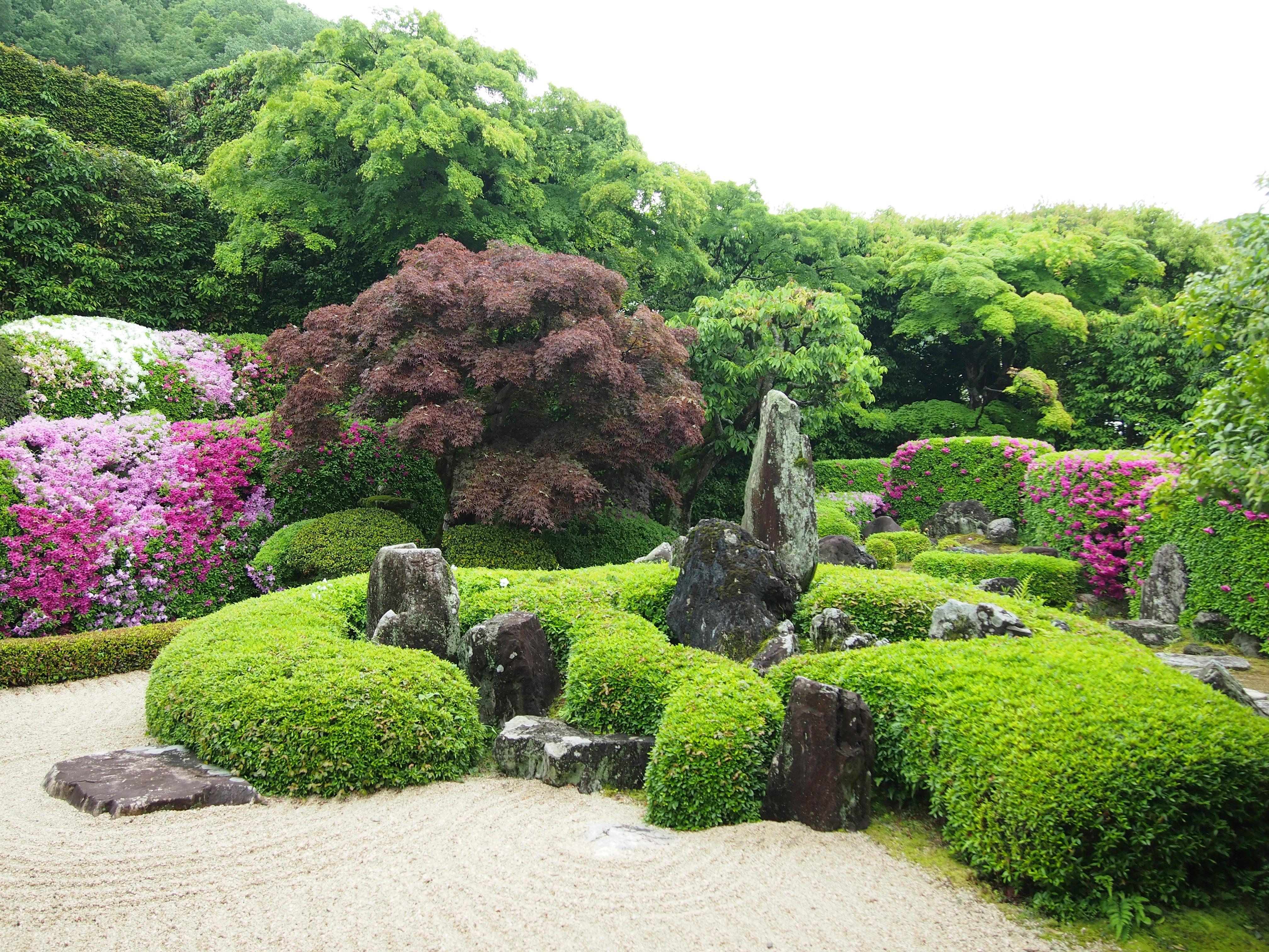 2018年5月8日の庭園